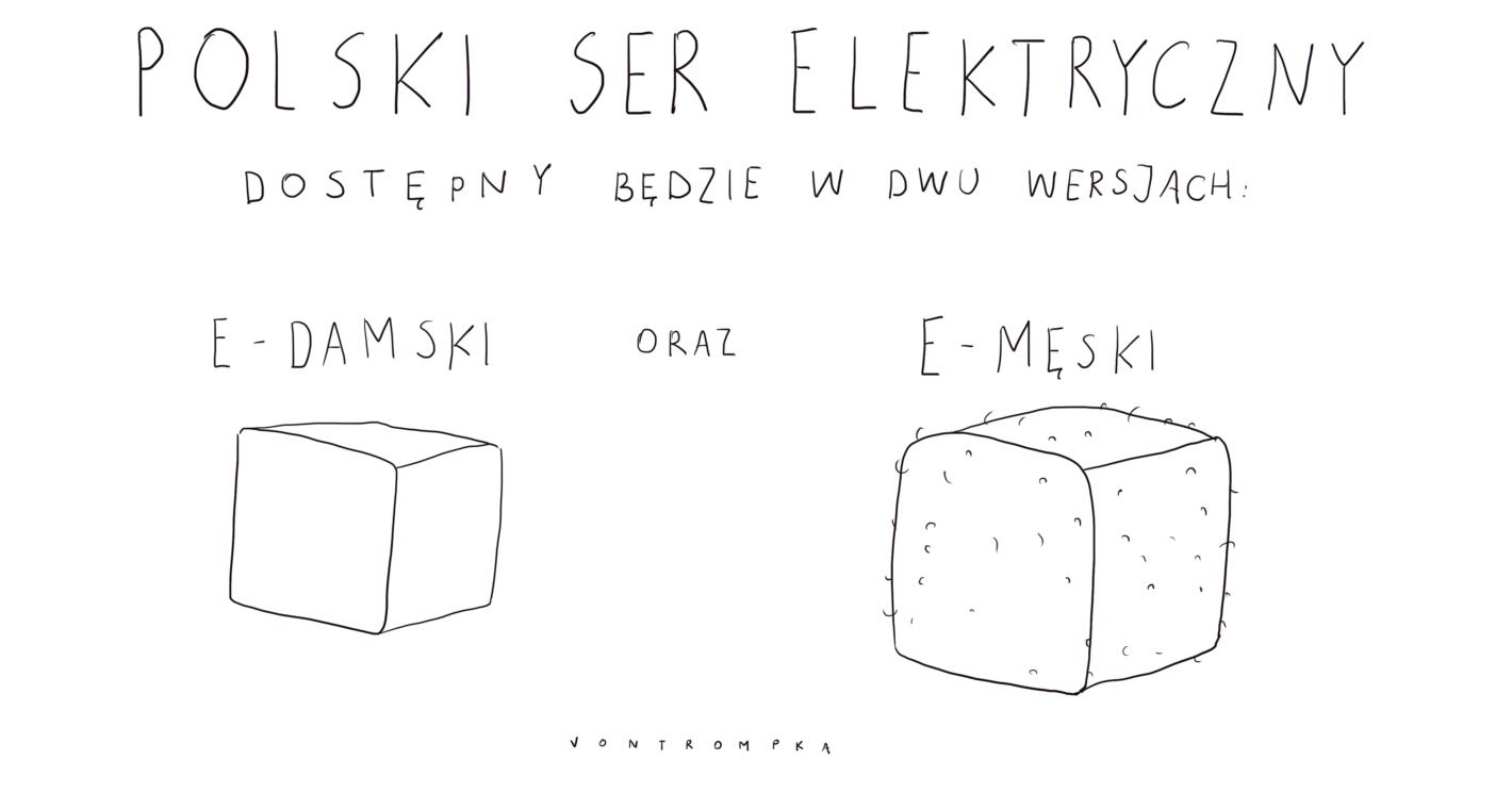 polski ser elektryczny dostępny będzie w dwu wersjach e-damski e-męski
