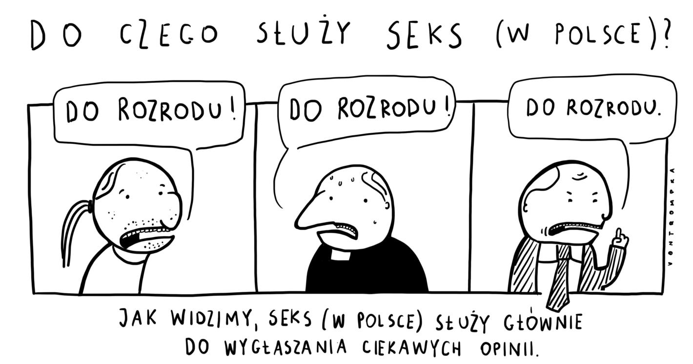 do czego służy seks (w Polsce)? do rozrodu! do rozrodu! do rozrodu. jak widzimy, seks (w Polsce) służy głównie do wygłaszania ciekawych opinii