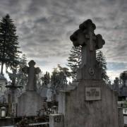 cmentarz w Suczawie
