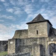 zamek w Suczawie