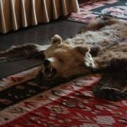 tzw. zamek Drakuli w Branie. całość w stylu tego niedźwiedzia.