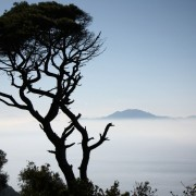 Afryka (z Gibraltaru)