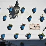 błętkitne akcenty w Kordobie