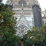 katedra w Sewilli, pomarańcze wszędzie!
